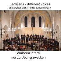 Different voices Aufnahmen 2019